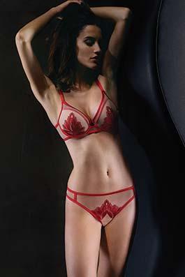 Passion red desire